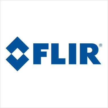 Flir Detection